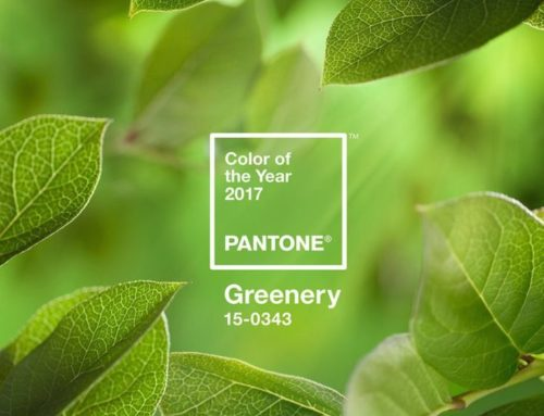 Our favourite ways to use Pantone Greenery in your Wedding
